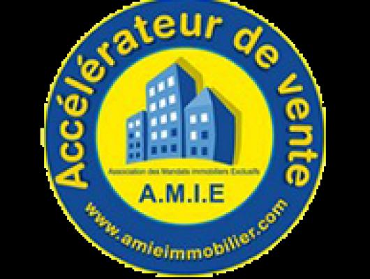 A.M.I.E