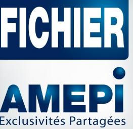 L'intérêt de vendre en exclusivité partagée via le fichier AMEPI