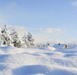 Quelle est la meilleure période de l'année pour acheter une maison ?