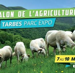 Foire agricole à Tarbes
